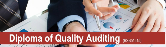 Quality Auditing2